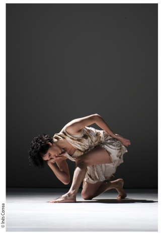 O Animal mais forte do mundo